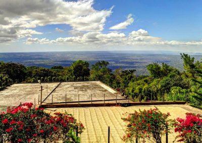 coffee-rolls-in-Nicaragua